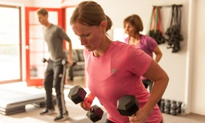 Flex Fitness Bootcamp: Four Weeks of Fitness Classes at StudioFlex (69% Off)