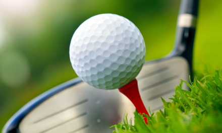 $32 for 18 Holes of Golf with Cart Rental for Two at Pheasant Run Golf Course (Up to $64 Value)