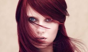 Namaste Training Studio: $14 for an Aveda Haircut, Shampoo, and Blow-Dry at Namaste Pure Design Salons ($22 Value)