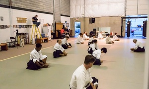 Potomac Aikikai (aikido): $20 for $80 Worth of Martial-Arts Lessons — Potomac Aikikai -- Aikido in Ashburn, VA