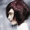 Up to 62% Off Aveda Haircare Package