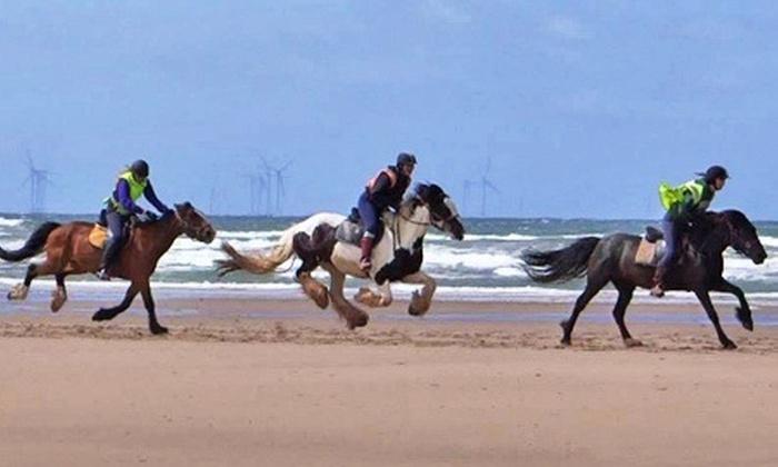 Murthwaite Green Trekking Centre - Millom: Beach Horse-Riding Trek from £24 with Murthwaite Green (Up to 56% Off)