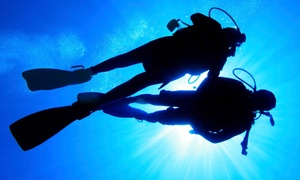 Coral Reef Dive Shop: Discover Scuba Course for One, Two, or Four People at Coral Reef Dive Shop in Slidell (Up to 42% Off)
