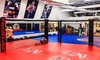 MMA American Top Team Sunrise - Sunrise Industrial Park: One or Two Months of Mixed-Martial Arts Classes with Uniform at MMA American Top Team Sunrise (Up to 55% Off)