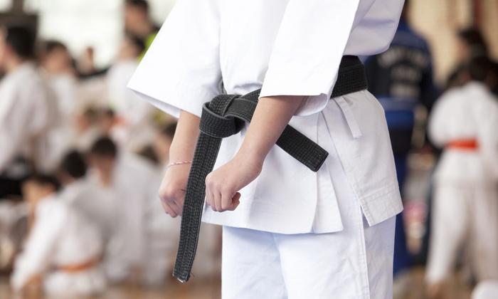 Randori Fight Club - Annapolis: $42 for $200 Worth of Martial-Arts Lessons — Randori Fight Club