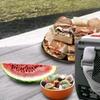 12-Volt Food and Beverage Cooler/Warmer