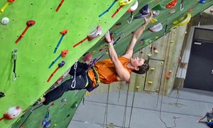 Evolution Rock + Fitness: Intro Climb Class with Visits for One or Two, or Five Climbing Visits–Evolution Rock + Fitness (Up to 54% Off)