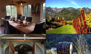 Up To 55% Off Wine Tour And Tasting At Vine Driven