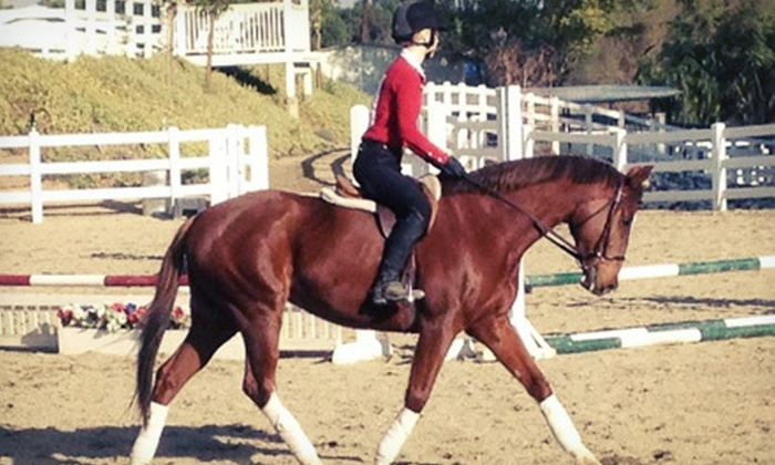 BSE Riding Academy - Huntington Beach: One or Four Horseback-Riding Lessons at BSE Riding Academy (Up to 62% Off)