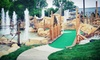 Zao Island - Valparaiso: One Round of Mini-Golf, Go-Karts, and Laser Tag for Four or Eight at Zao Island (Up to 52% Off)