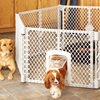 North States 6-Panel Exercise Play Pen for Pets