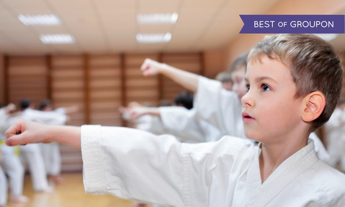 Go2Karate Pittsburgh - Pittsburgh: 10 Martial-Arts Classes and Uniform, or 16 Classes, Uniform, Test, and Graduation Belt at Go2Karate (94% Off)