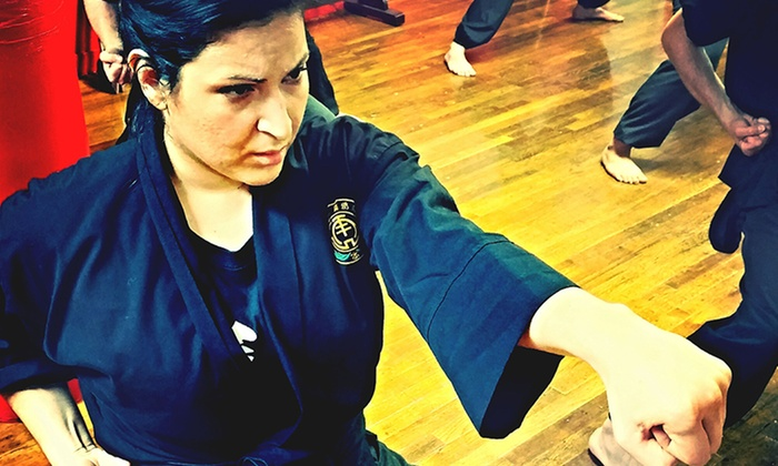 Bo Law Kung Fu - New York: One or Two Months of Classes or a Private Intro Session with a Kung-Fu Master at Bo Law Kung Fu (Up to 68% Off)