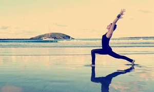 $24.99 For Yoga Shred For Weightloss Online Workout Videos From Sadie Nardini ($49.99 Value)