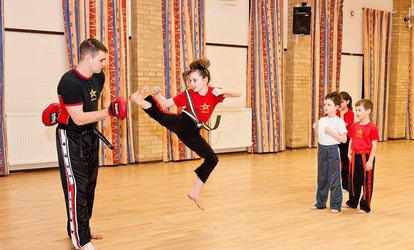 One Month of Martial Arts Classes for Kids Plus a Training T-Shirt at Inspired Martial Arts