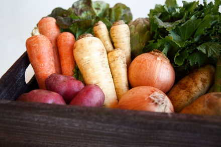 Organic Fruit and Vegetable Delivery from Organic Mountain Farms (Half Off). Two Options Available.