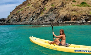 Windward Watersports: $22 for a Four-Hour Kayak Rental with Paddle and Life Jacket at Windward Watersports ($49 Value)