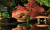 Japanese Culture Center - Lakeview: Japanese Cultural Workshops at Japanese Culture Center (58% Off). Four Options Available.