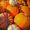 Up to 54% Off Pumpkin Patch Rides and Buy-One-Get-One Pumpkins