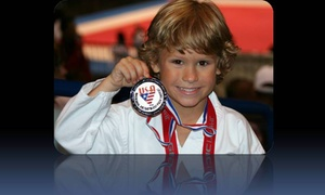 Usa Karate Clubs: $75 for $250 Worth of Martial-Arts Lessons — USA Karate Clubs