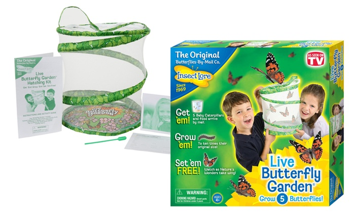 insect lore live butterfly garden - Live Butterfly Garden