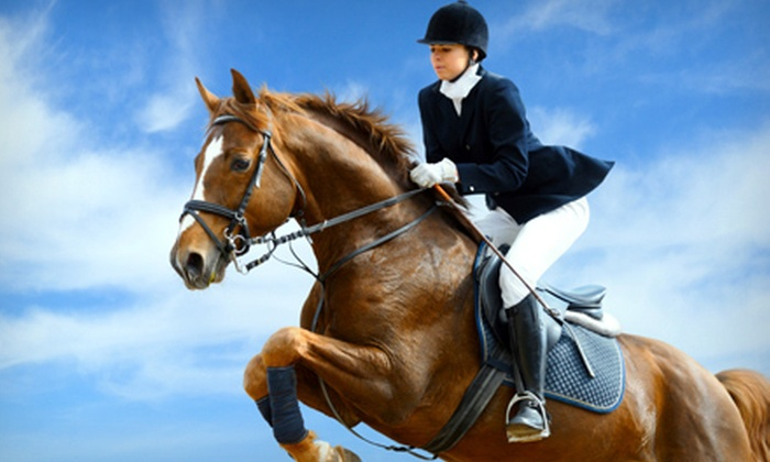 Elite Sporthorse - Central Southwest: Two or Four Private Horseback-Riding Lessons at Elite Sporthorse (Up to 58% Off)