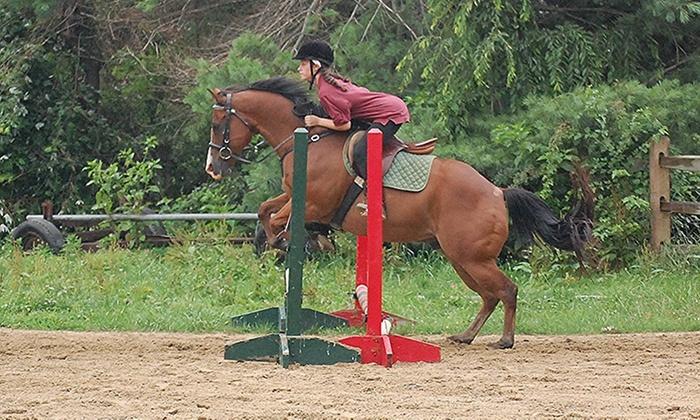Opening Number Riding Academy - 9, Calvert: Four-Hour Horseback-Riding Lesson at Opening Number Riding Academy (50% Off)