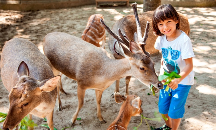 Bali: From $15 for a Bali Day Zoo Admission Ticket