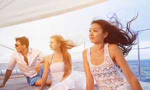 Sail Mission Bay: Half-Day, Sunset, Fireworks, or Marine Wildlife Excursion from Sail Mission Bay (Up to 50% Off)