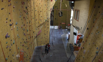 AllDay Indoor Rock Climbing for One $10, Two $19 or Four People $37 at The Edge Rock Climbing Up to $84 Value