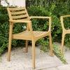 2 Eucalyptus Wood Chairs