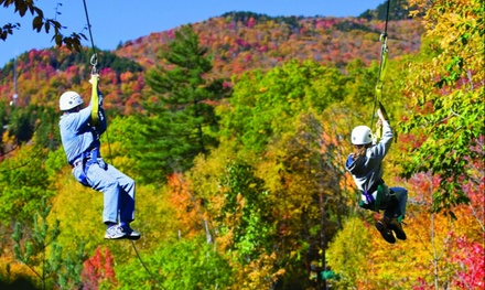 Tree-Top Canopy Zipline Tour for One, Two, or Four at Alpine Adventures (Up to 26% Off)