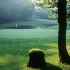 57% Off Golf, Swimming and Lunch for Two