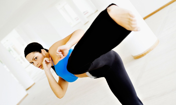 The Kung Fu School - Houston: 5 or 10 Kung Fu Cardio or Boot-Camp Classes at The Kung Fu School (Up to 76% Off)
