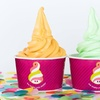 Up to 45% Off at Menchie's Frozen Yogurt at Meridian