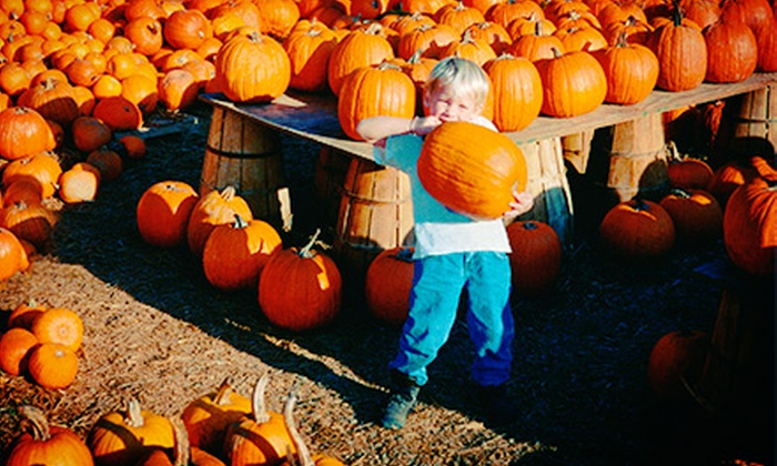 Abbey Farms of Marmion Abbey - Aurora: Pumpkin Daze Autumn Festival for Four or Six at Abbey Farms of Marmion Abbey (Up to Half Off)