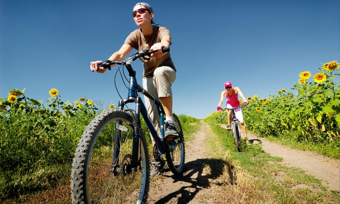 Chelmsford Cyclery - Chelmsford: $10 Off Purchase of Tune Up at Chelmsford Cyclery