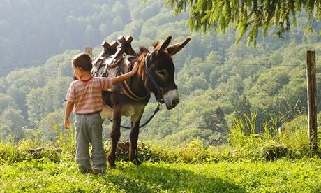 Ruta en burro para 1 o 2 niños desde 4,95 € en Rucs de La Serralada Oferta en Groupon
