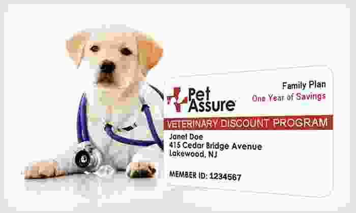 Pet Assure Veterinary Discount Plans: One-Year Single Cat, Single Dog, or Household Veterinary Discount Plan from Pet Assure (Up to 73% Off). Free Shipping.