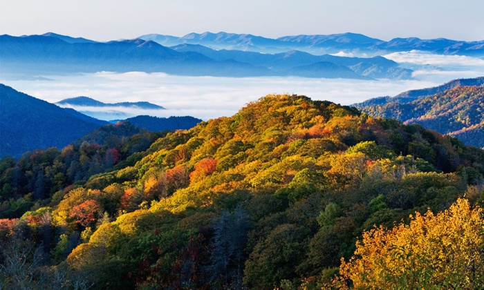 null - Dayton: Stay at Wyndham Smoky Mountains in Sevierville, TN. Dates Available into May.
