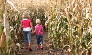Rosedale Farms and Vineyards: Corn-Maze Package with Apples and Doughnuts for Two or Four at Rosedale Farms and Vineyards (Up to 47% Off)