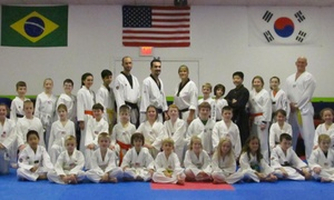 Xcel Taekwondo Center: $99 for $180 Groupon — Xcel Taekwondo Center