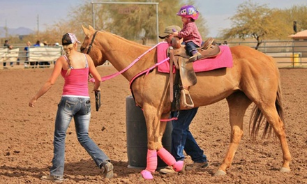 Two, Four, or Six 60-Minute Horseback Riding Lessons at Magowan Ranch (Up to 51% Off)