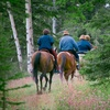 57% Off Spring Trail Ride from Equine Boulevard