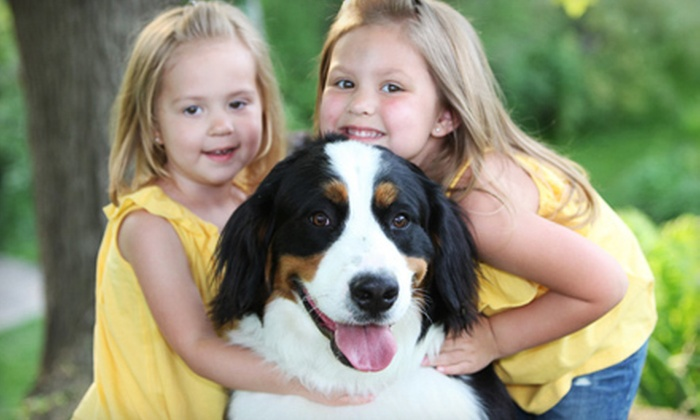 Smile America Portraits - Multiple Locations: $29 for an Outdoor Pet Photo Shoot with Prints from Portrait Scene ($187 Value)