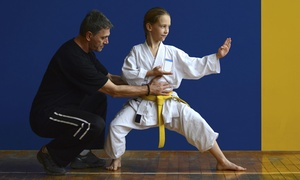 Martial Arts Training Center: $40 for $134 Worth of Martial-Arts Lessons — Martial Arts Training Center