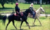 The Cameron Ranch - La Center: 60-Minute Introductory Horseback-Riding Lesson for One or Two at The Cameron Ranch in Woodland (Up to 52% Off)