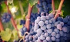 Jazz'n the Vines - Hillcrest Country Club: Winery-Concert Package for Two or Four at Pontchartrain Vineyards (Up to 56% Off)