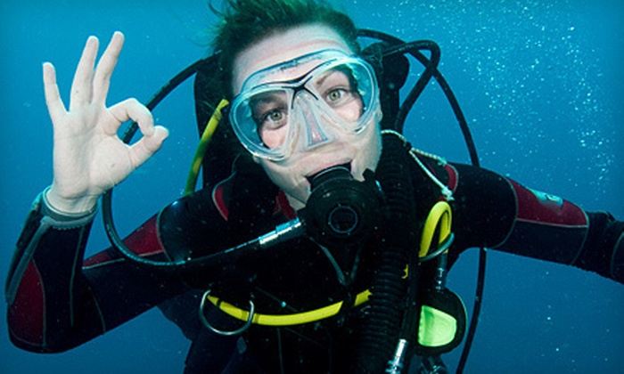 All About Scuba - Hiddenbrooke: Intro to Scuba Class for Two or PADI Certification Course with Partial Equipment Rental at All About Scuba (Up to 53% Off)