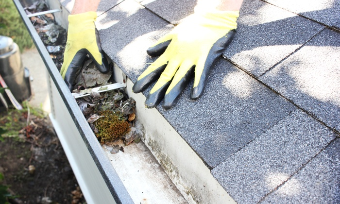 Friendly Giant Window and Gutter Cleaning - Victoria: Gutter Cleaning for Up to 200 or 300 Feet from Friendly Giant Window and Gutter Cleaning (Up to 50% Off)